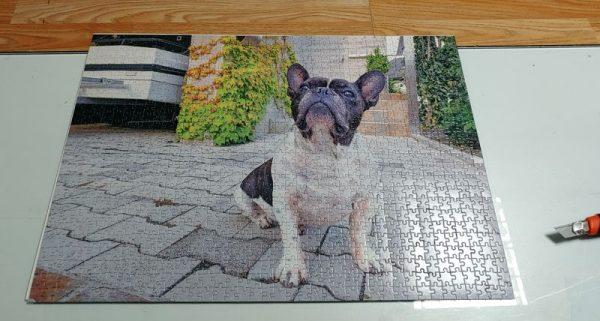 puzzle kuža